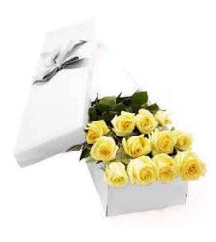 Hello Sunshine Yellow roses