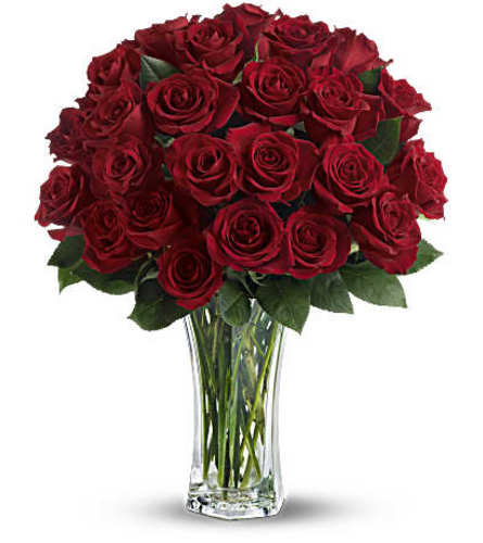 24 Vibrant Red Roses