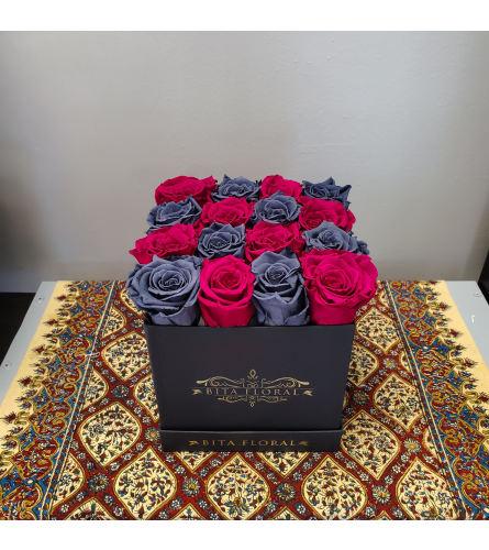 16 Grey/Hot Fuchsia Eternity Roses