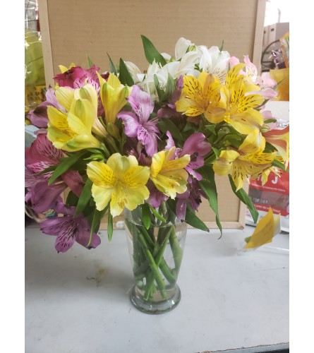 colorful lilies