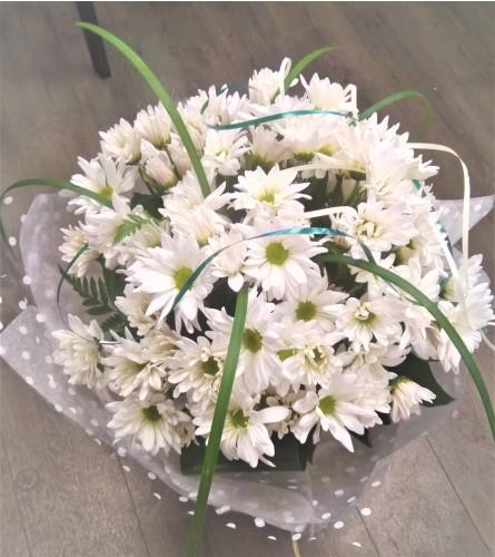 Elegante daisy by O'Flowers