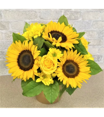 Sunflower's time by O'Flowers
