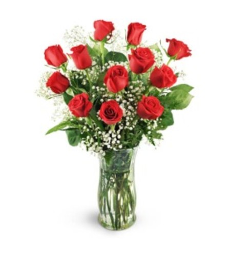 Dozen Red Colored Roses
