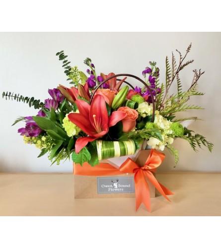 Gift bag of Blooms