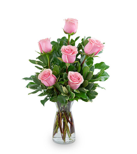 Pink Roses (6)