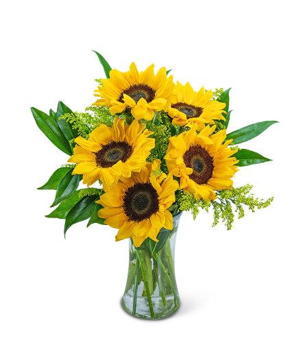 Sprinkle of Sunflowers