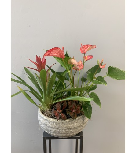 XL Modern Planter