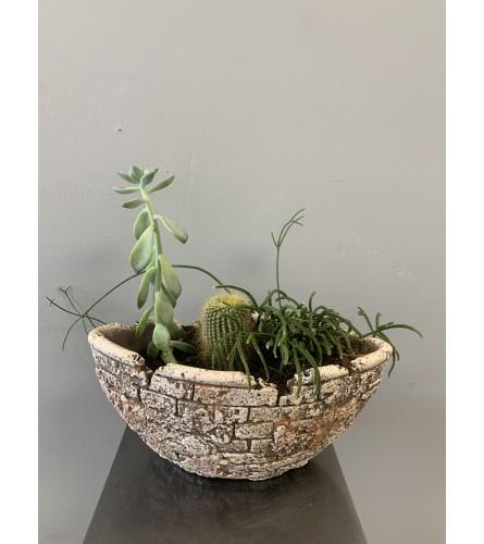 Modern Succulent Planter