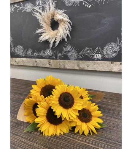 Armful of Sunflowers