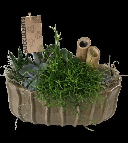 Manon Taupe Succulent Planter