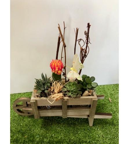 Wheelbarrow Delight Dish Garden