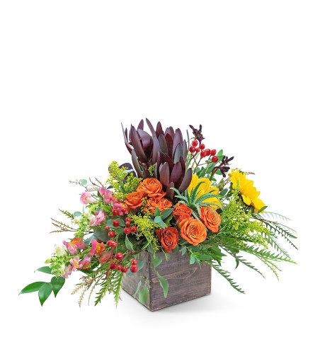 Aurora Moment Flower Arrangement