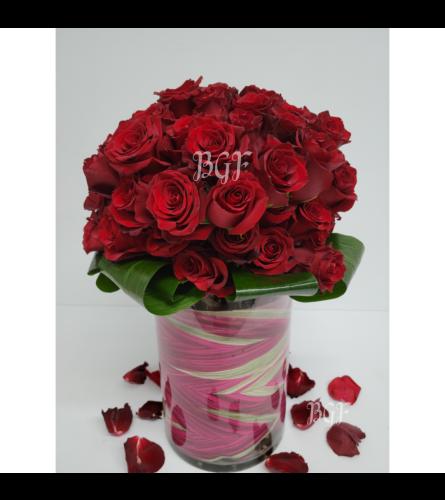 Red Roses Elegance