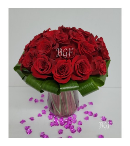 Luxurious Roses