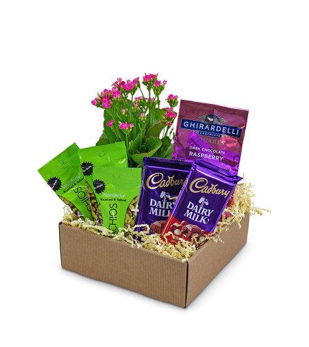 Sugar and Spice Basket - Gift Basket