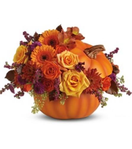 Blooming Pumpkin TF