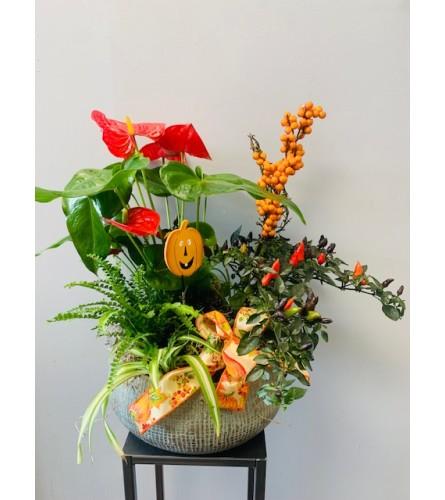 XL Modern Ceramic Fall Planter