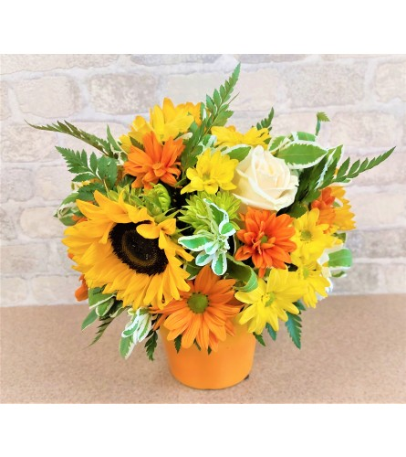 Vibrante sunflowers by O'Flowers