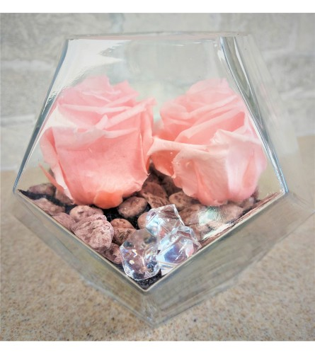 Preserved Roses by O'Flowers