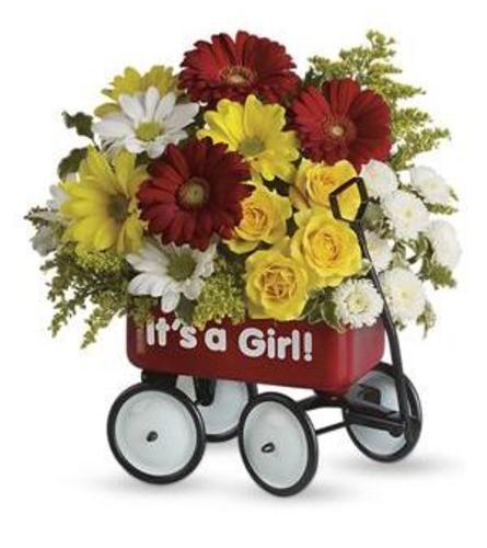 tf baby wagon for girl