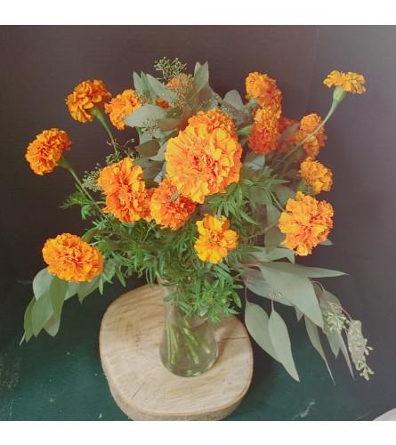 Merry Gold Marigolds