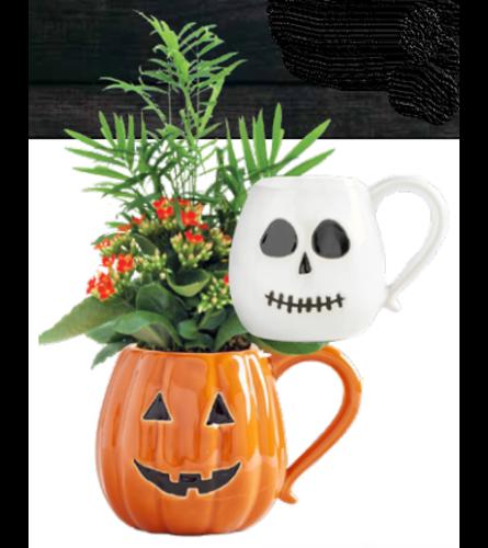 Assorted Pumpkin/ Ghost Mug Planter