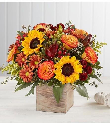 Full of Fall flowers
