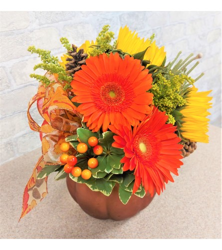 Giving thanks in orange colours