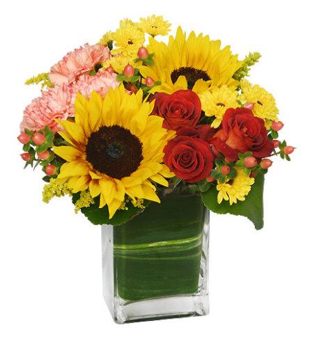 Season Fo Sunflowers!