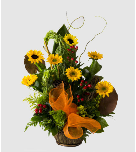 Ask for Sunflowers