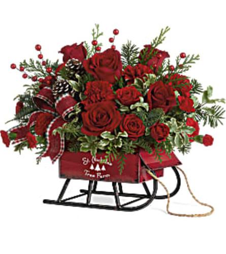 Teleflora's Rosy Sleigh Bouquet