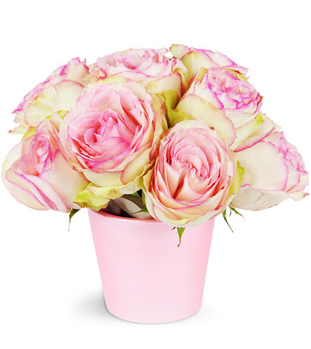 For My Sweetie