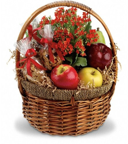 Health Nut Basket with Plant