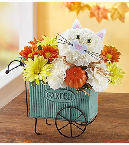 Fabulous Fall Feline™