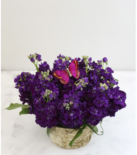 Rustic Purple Passion