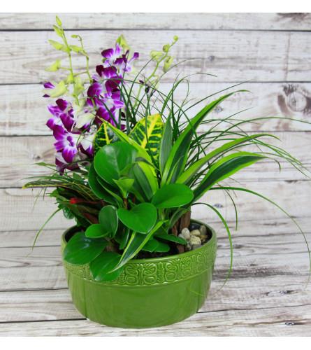 Lush Green Ceramic Garden