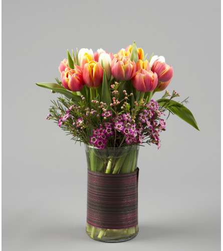 A Tulip Surprise
