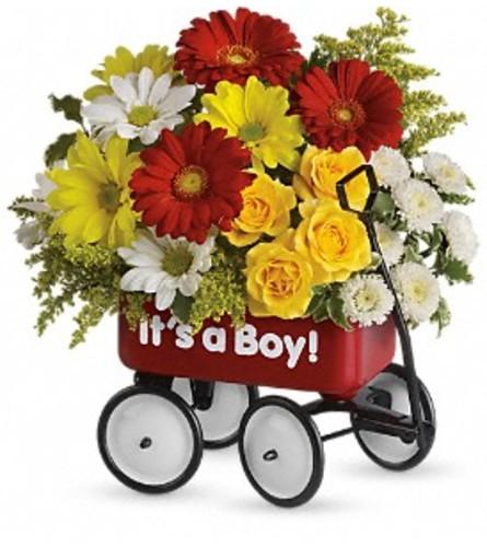 Boy Wagon