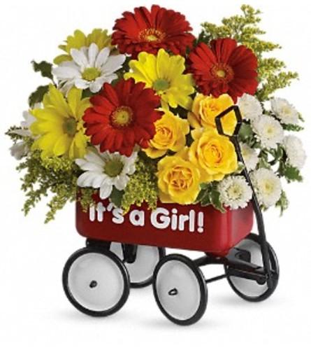 Red Baby Wagon Girl