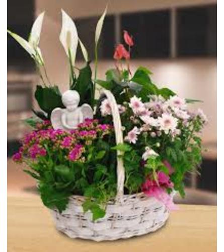 LIVING BASKET WITH ANGEL