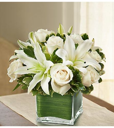 Modern Embrace™ White Rose and Lily Cube