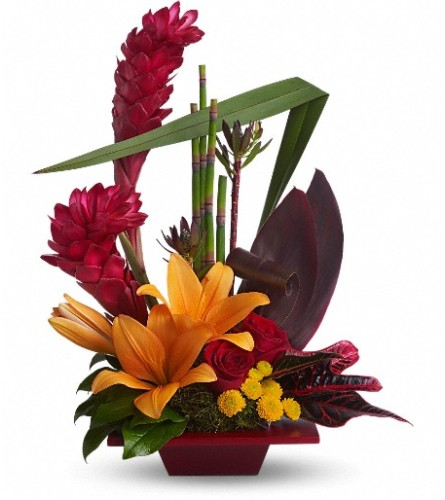 Teleflora's Tropical Bliss