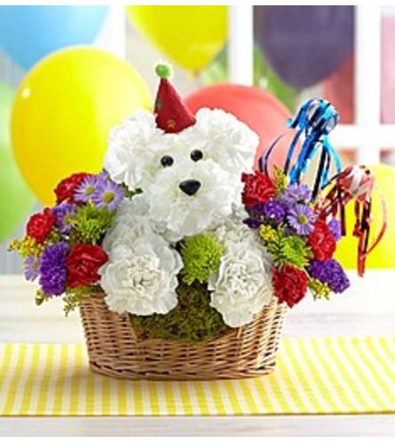 HAPPY BIRTHDAY DOG LOVER'S