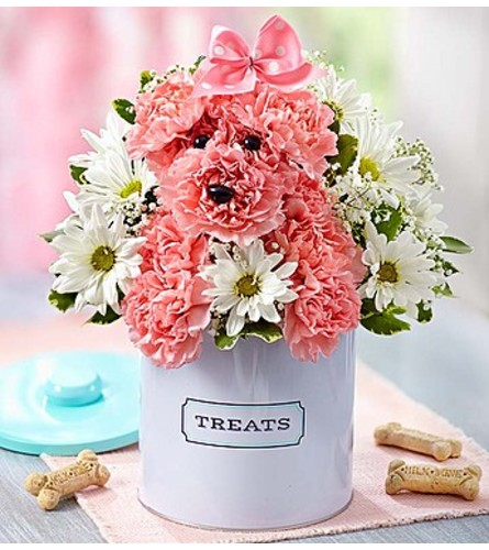 Princess Paws™ in Treats Canister