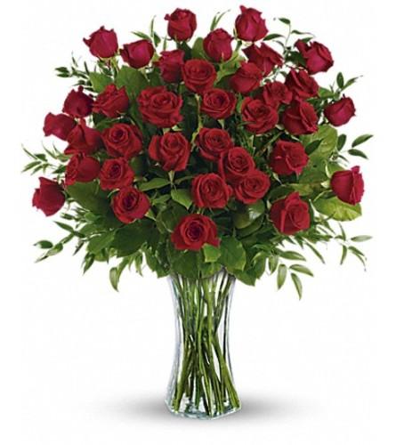 36 Breathtaking Roses