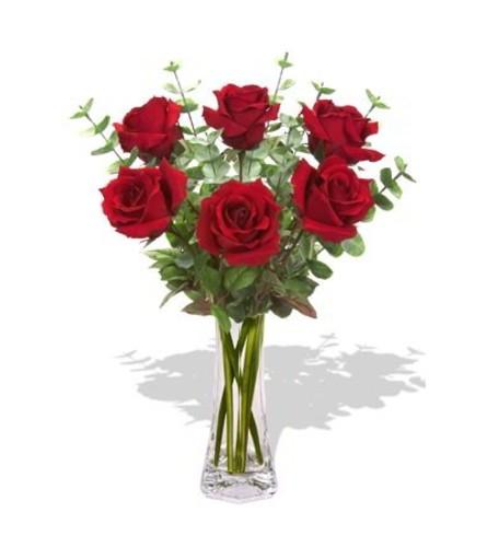 Exquisite Roses in Red