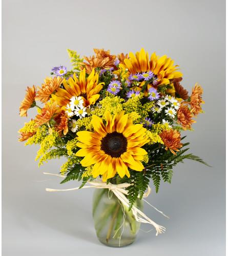 Wild Sunflower Field