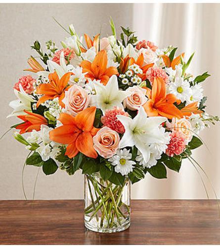 Sincerest Sorrow™ - Peach, Orange & White