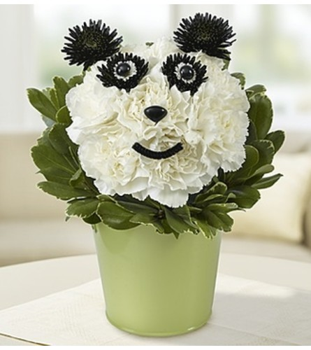 Panda Flower Pail Houston Tx Florist