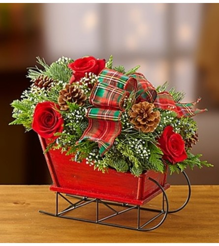 Traditional Tidings™ Sleigh Arrangement